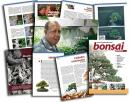 Revista Bonsai Puntoar nº 13