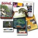 Revista  Bonsai Puntoar nº 10
