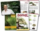 Revista Bonsai Puntoar  nº 12